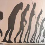 evolutionchart